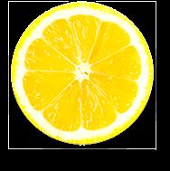 Imagem Fruta Laranja